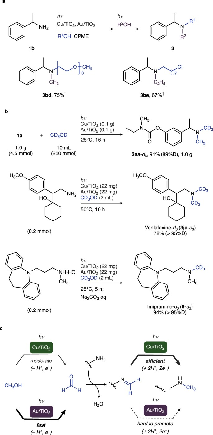N-Alkylation of functionalized amines with alcohols using a copper