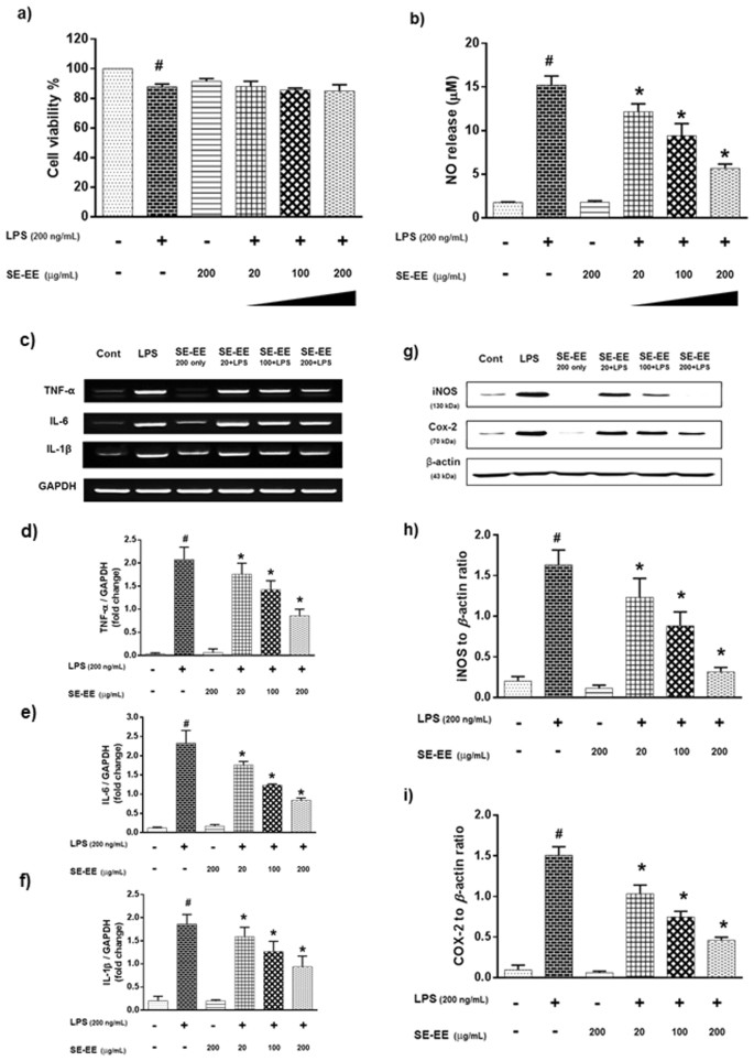 Ameliorative potential of desalted Salicornia europaea L   extract