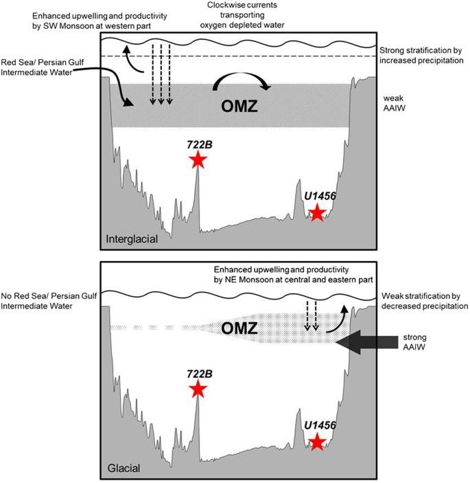 Orbital-scale denitrification changes in the Eastern Arabian Sea