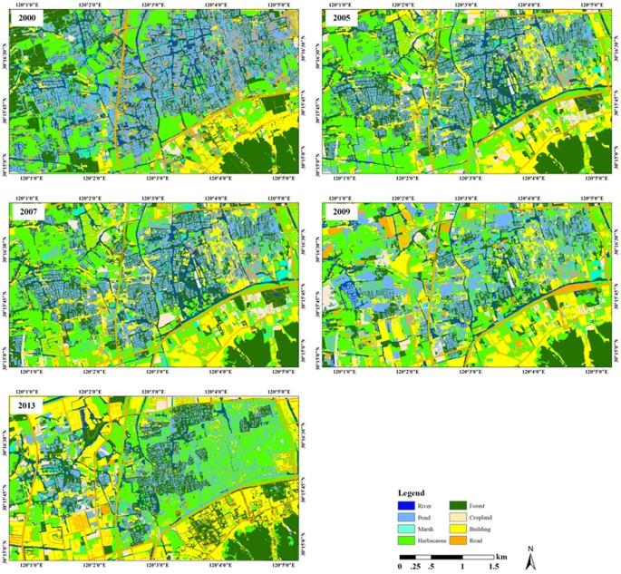 Quantitative assessment of urban wetland dynamics using high