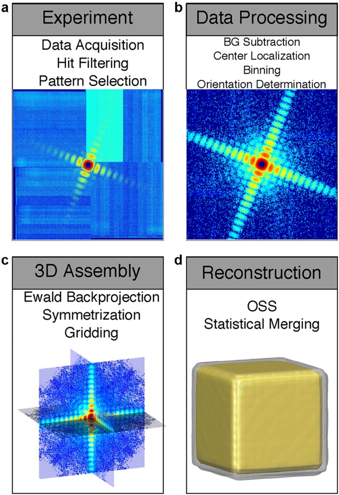 Single-shot 3D coherent diffractive imaging of core-shell