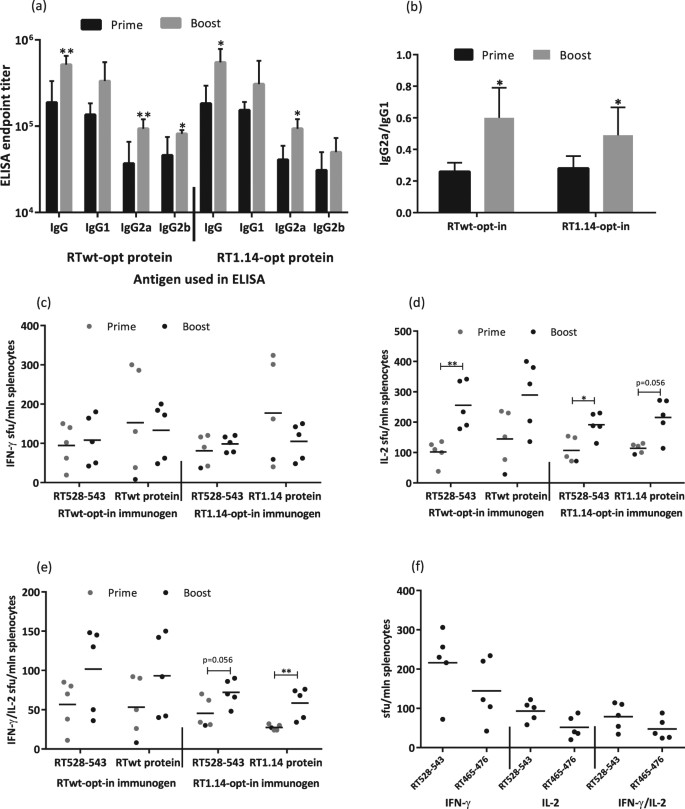 455cfcb8f27 RT-specific antibody and cellular responses after repeated immunization  with expression-optimized RT genes. BALB/c mice (n = 5 or 6) were immunized  with two ...