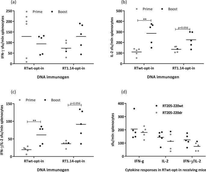 872230c1c5e Cross-recognition of wt/dr proteins and peptides in RT gene-immunized mice.  Mice were immunized as described in Figs 2 and 3. RT1.14 and RTwt proteins  were ...