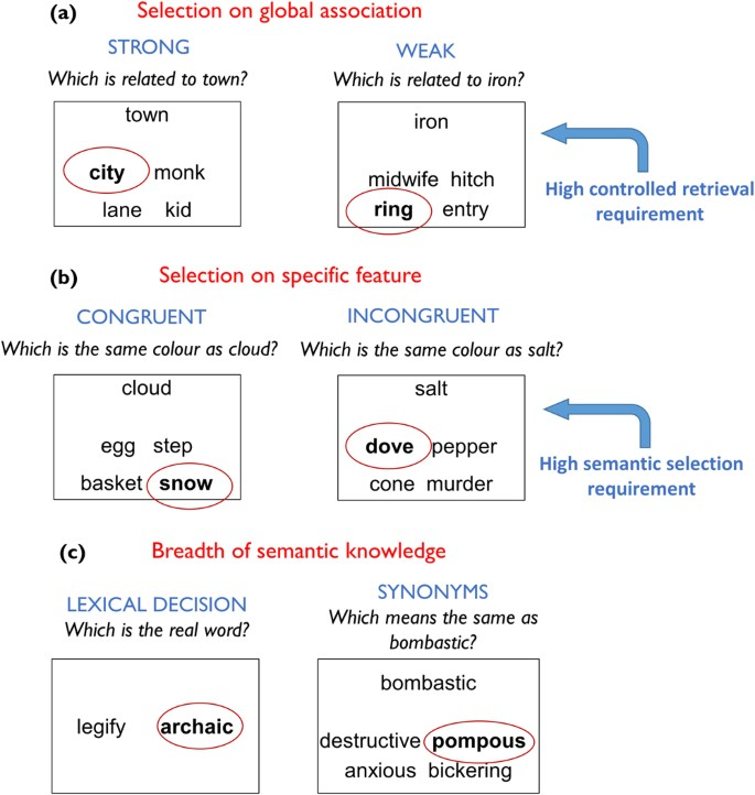An individual differences approach to semantic cognition