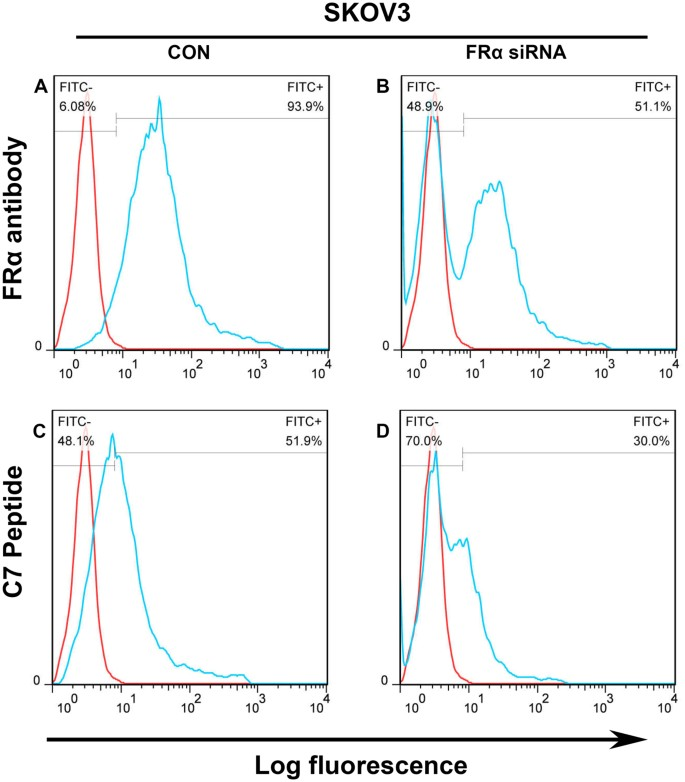 Identification of a peptide for folate receptor alpha by phage