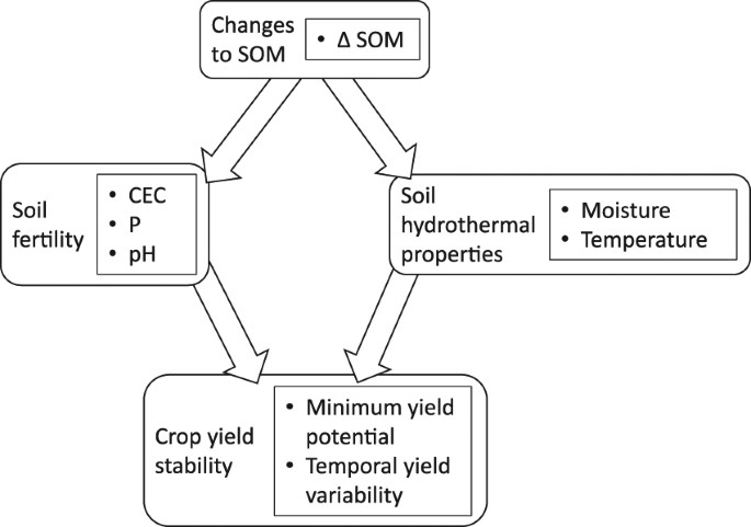a regionally adapted implementation of conservation agriculture delivers rapid improvements to soil properties associated with crop yield stability scientific reports crop yield stability