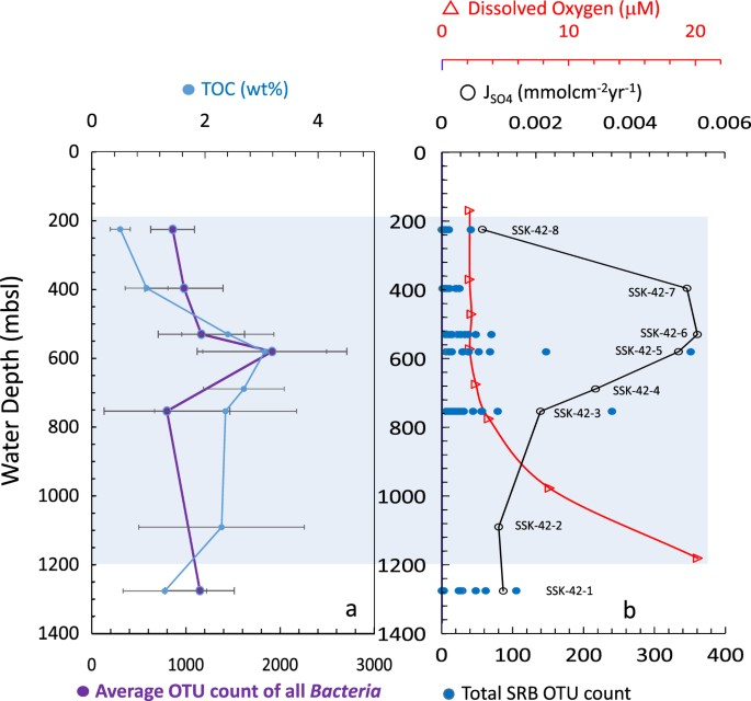 Enhanced carbon-sulfur cycling in the sediments of Arabian