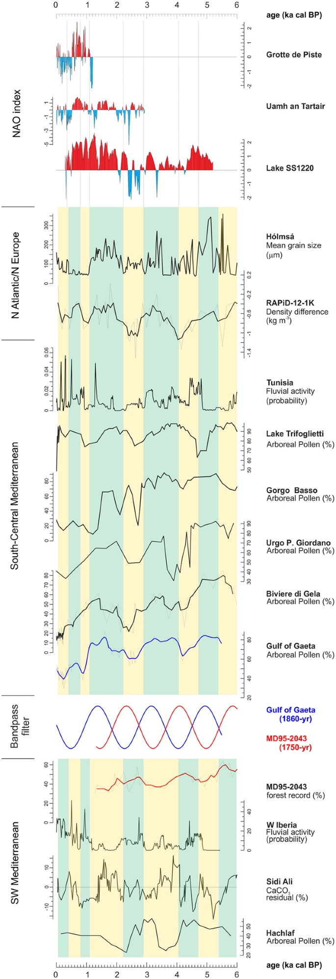 Holocene forest dynamics in central and western