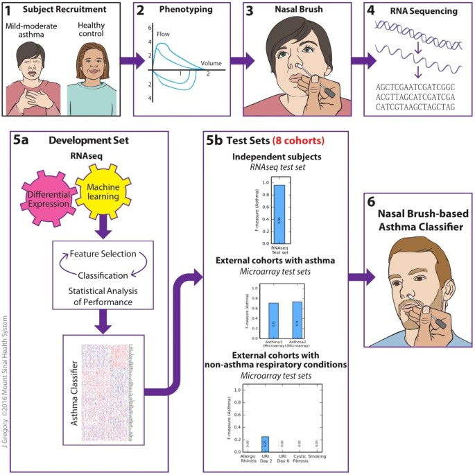 A Nasal Brush-based Classifier of Asthma Identified by