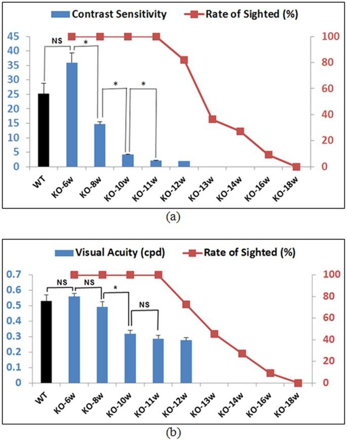 Optimization of Optomotor Response-based Visual Function