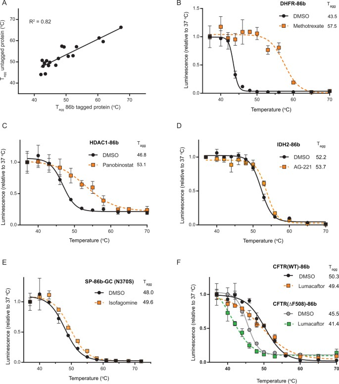 A widely-applicable high-throughput cellular thermal shift assay