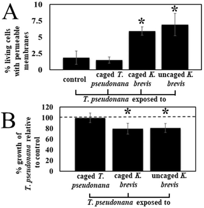 Karenia brevis allelopathy compromises the lipidome