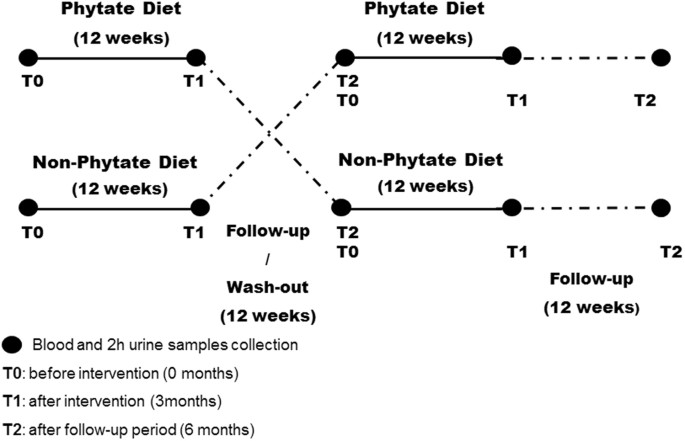 Phytate Decreases Formation of Advanced Glycation End