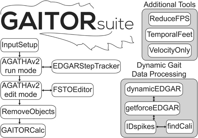 The Open Source GAITOR Suite for Rodent Gait Analysis
