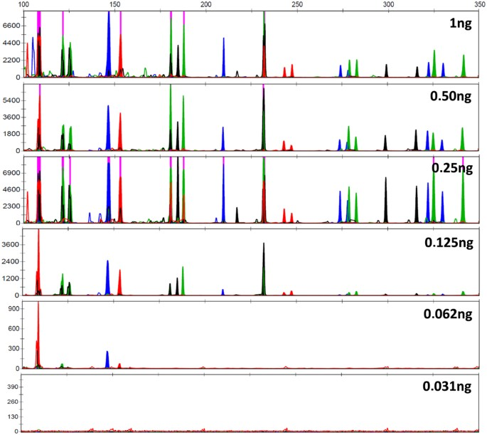 Multiplex STR amplification sensitivity in a silicon