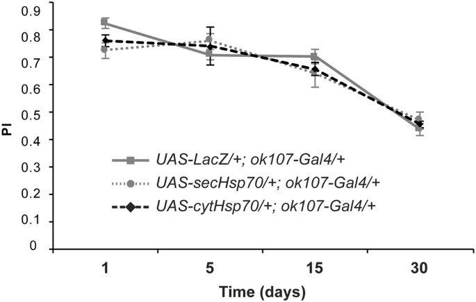 Engineered Hsp70 chaperones prevent Aβ42-induced memory