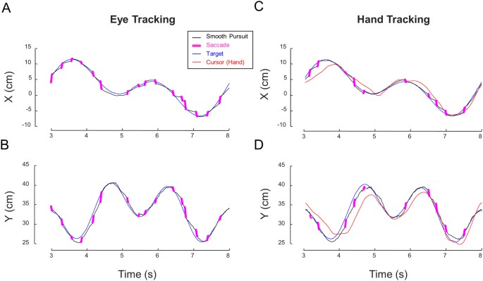 Different gaze strategies during eye versus hand tracking of