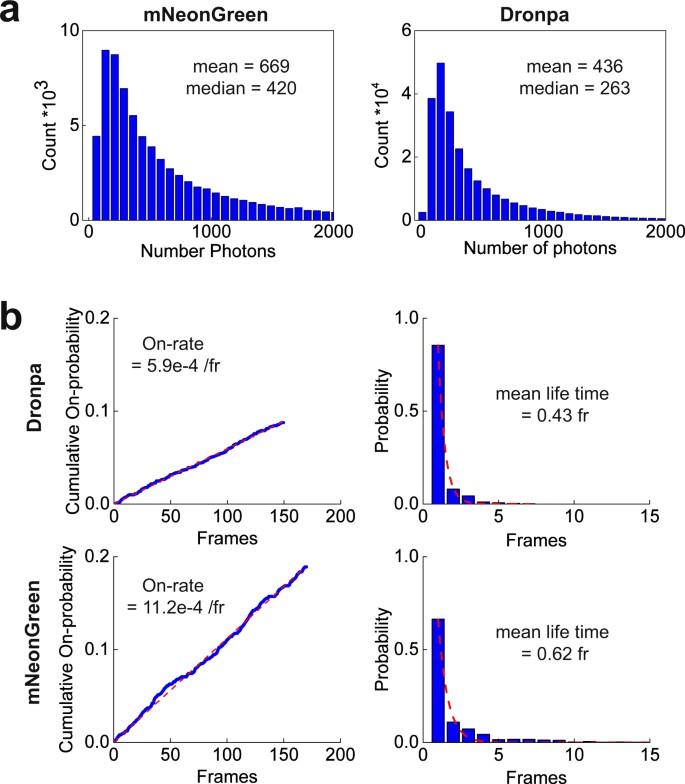 Optimization of sample preparation and green color imaging