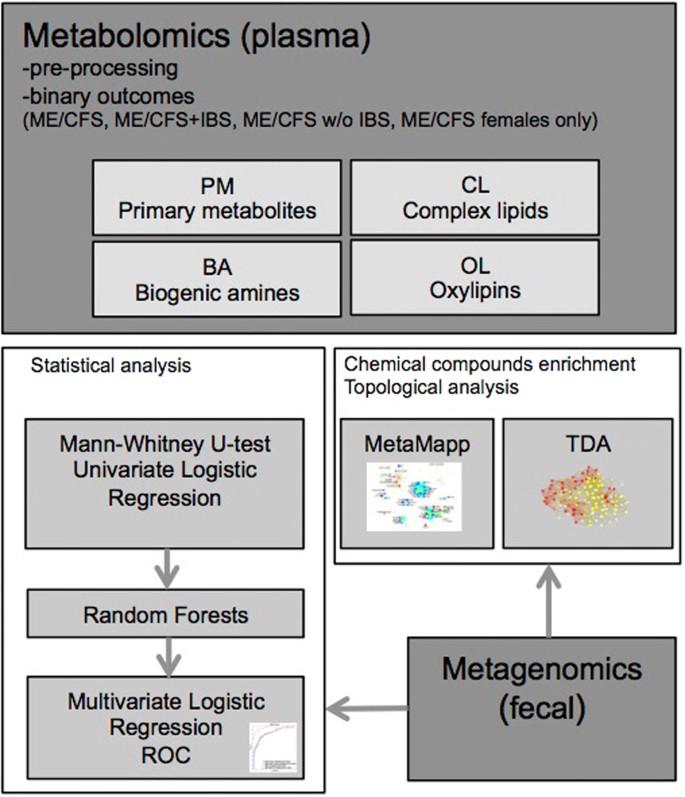 Insights into myalgic encephalomyelitis/chronic fatigue