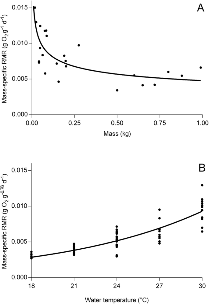 The influence of ontogenetic diet variation on consumption rate