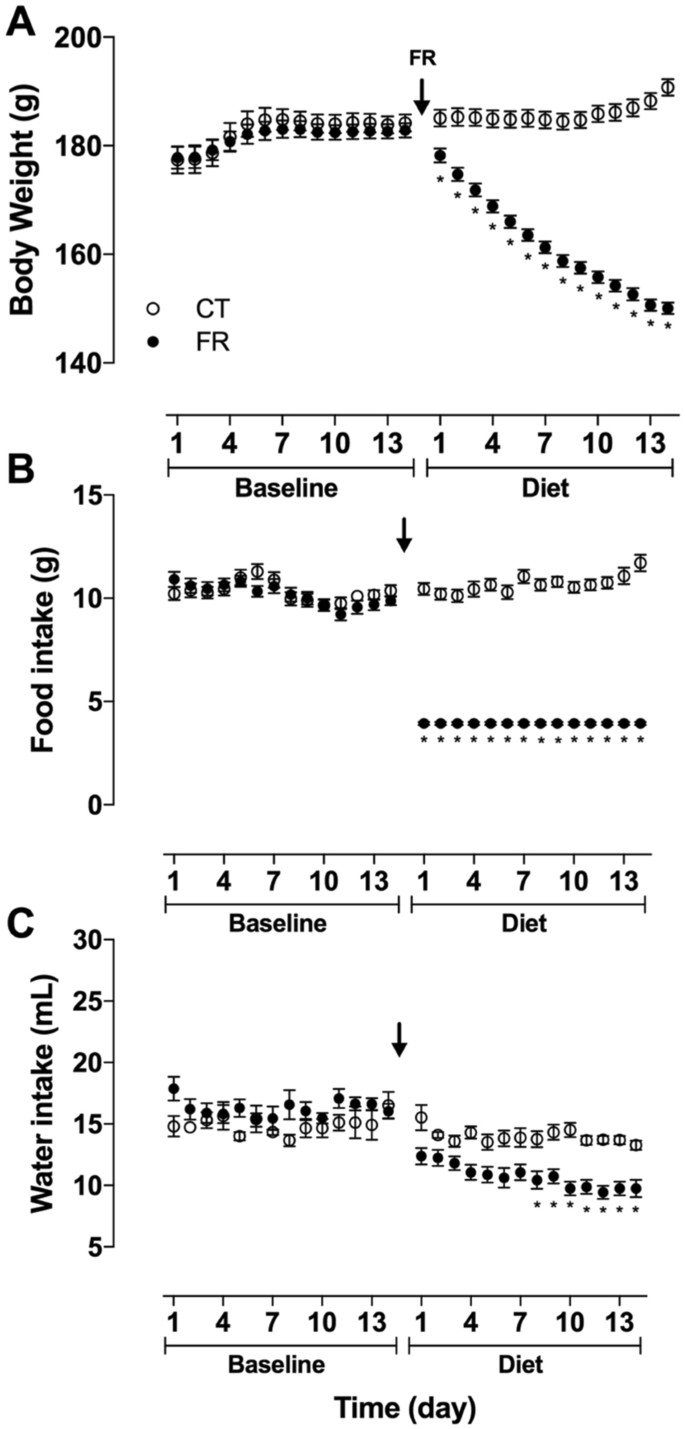 Role of the Renin Angiotensin System in Blood Pressure Allostasis