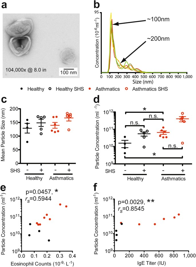 Unique Lipid Signatures of Extracellular Vesicles from the Airways