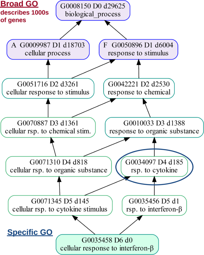 GOATOOLS: A Python library for Gene Ontology analyses
