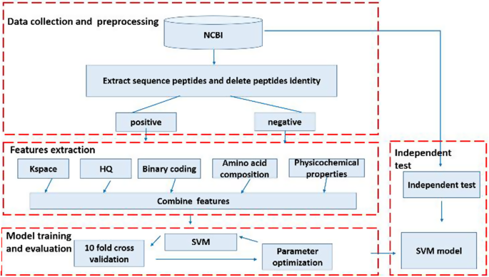 SVM-SulfoSite: A support vector machine based predictor for