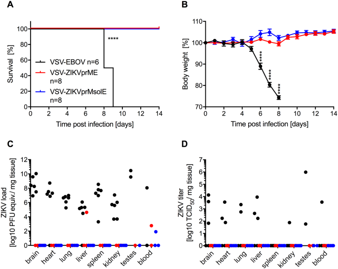 A VSV-based Zika virus vaccine protects mice from lethal challenge