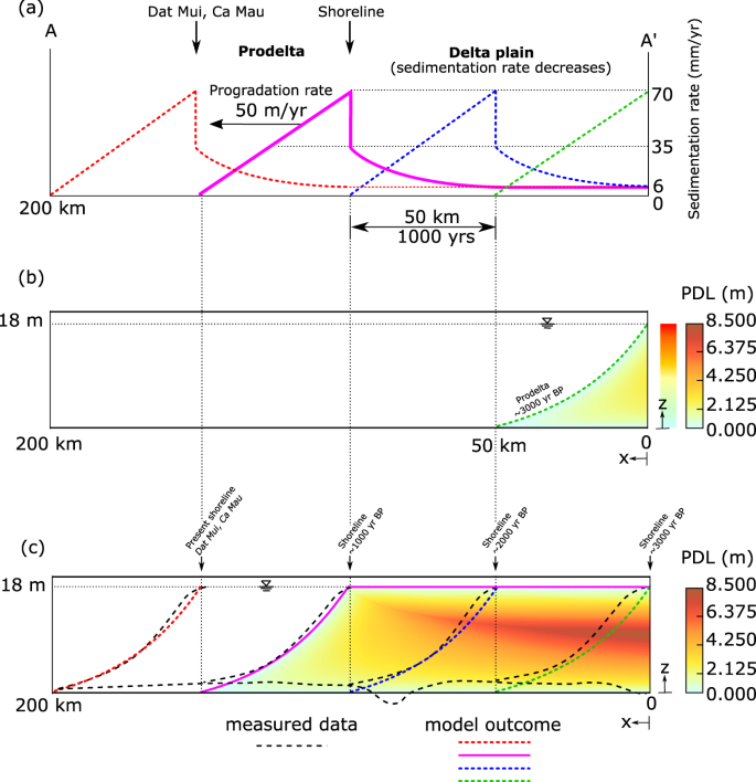The role of sedimentation and natural compaction in a