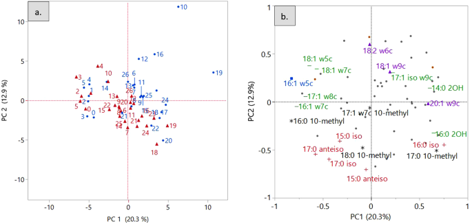 Soil Properties Drive Microbial Community Structure in a