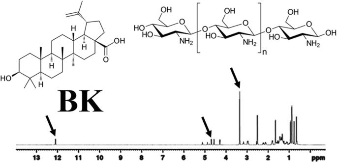 Novel Nanosized Chitosan-Betulinic Acid Against Resistant
