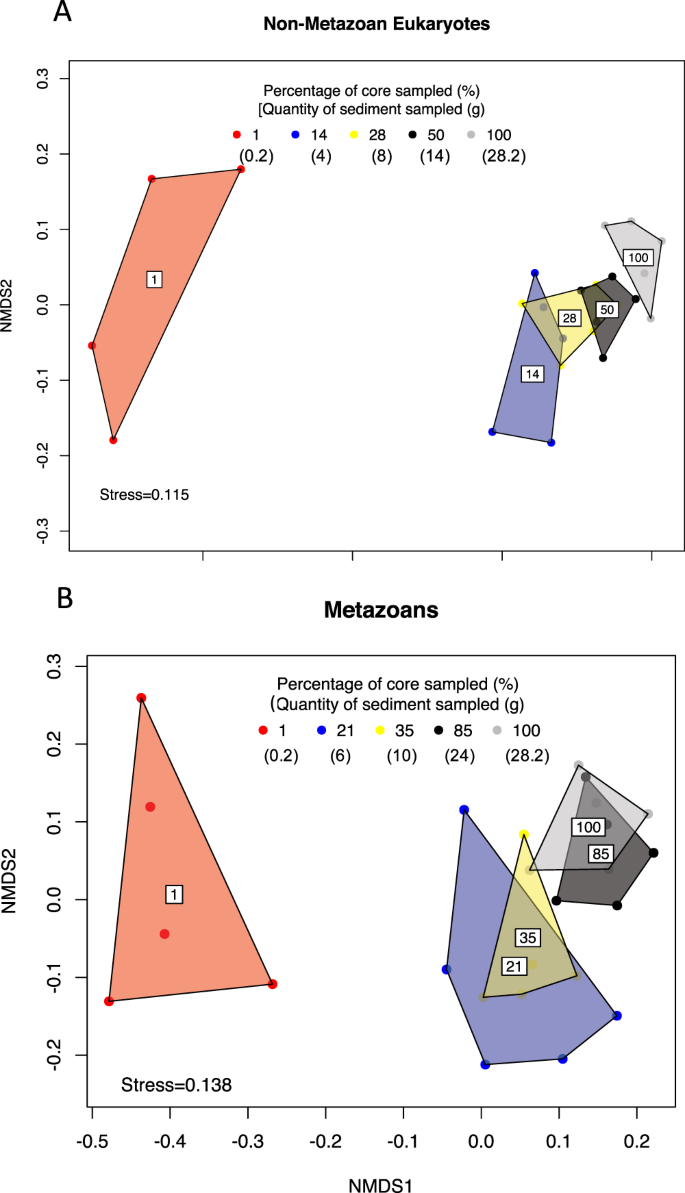 Sample size effects on the assessment of eukaryotic diversity and