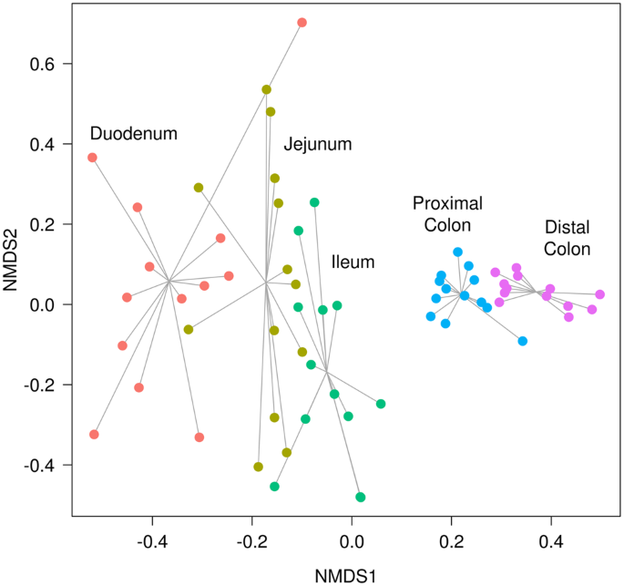 non-metric multidimensional scaling (nmds) plot based on bray-curtis  dissimilarities for the metagenome (kegg orthologies (kos) counts)  predicted through
