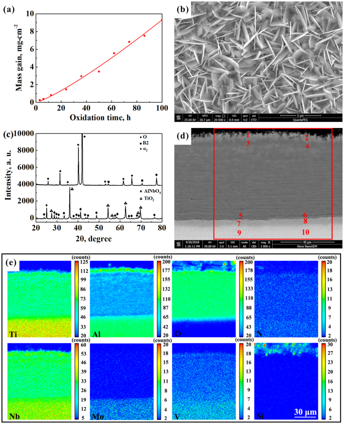 Thermodynamic and microstructural study of Ti 2 AlNb oxides at 800