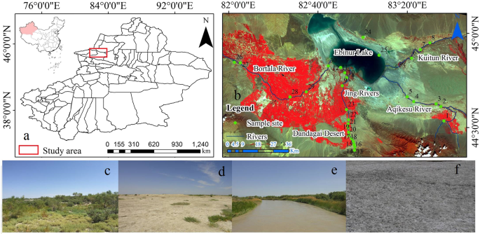 Effects of land use/cover on surface water pollution based on remote