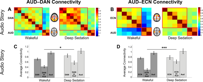 Functional diversity of brain networks supports