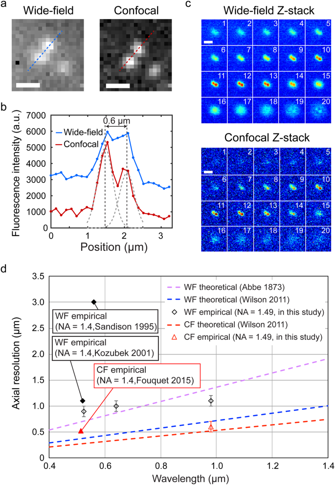 Spinning-disc confocal microscopy in the second near-infrared window
