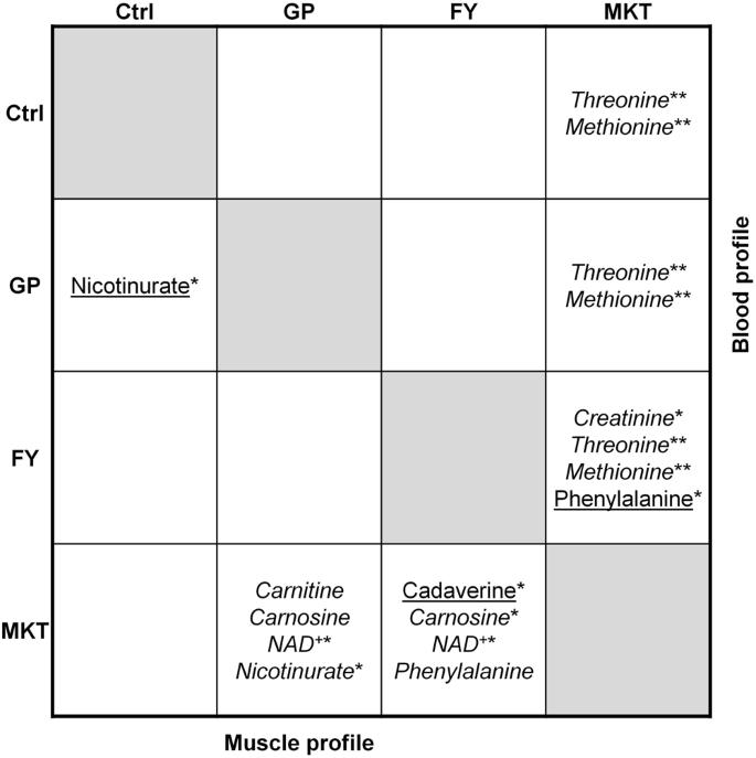 Skeletal muscle metabolomics and blood biochemistry analysis reveal