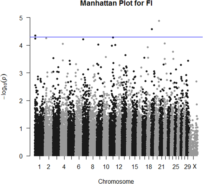 GWAS and eQTL analysis identifies a SNP associated with both