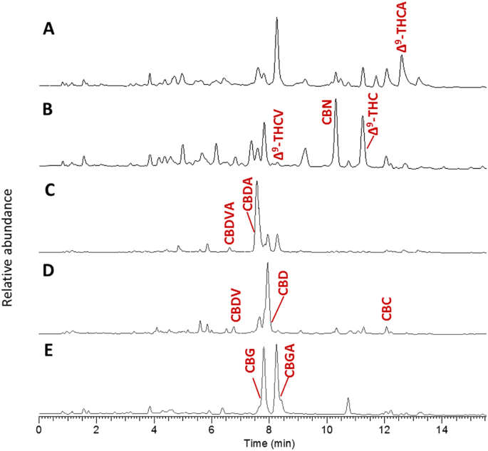 A new ESI-LC/MS approach for comprehensive metabolic profiling of