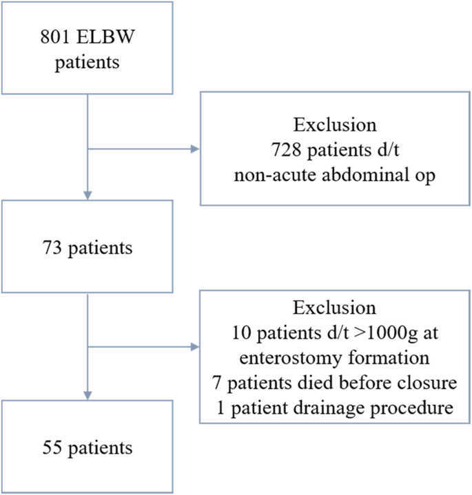 The Optimal Timing of Enterostomy Closure in Extremely Low