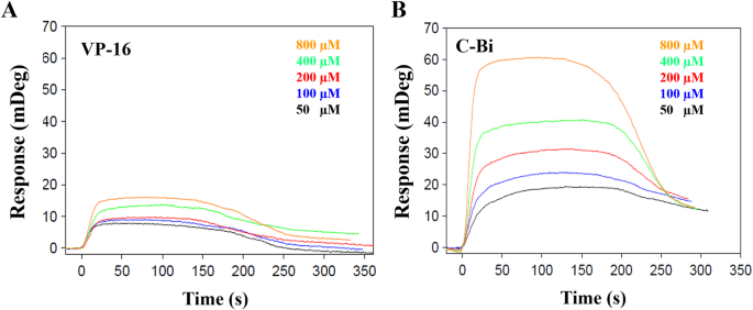 bf1b684e662 Increasing the distance between two monomers of topoisomerase IIβ ...