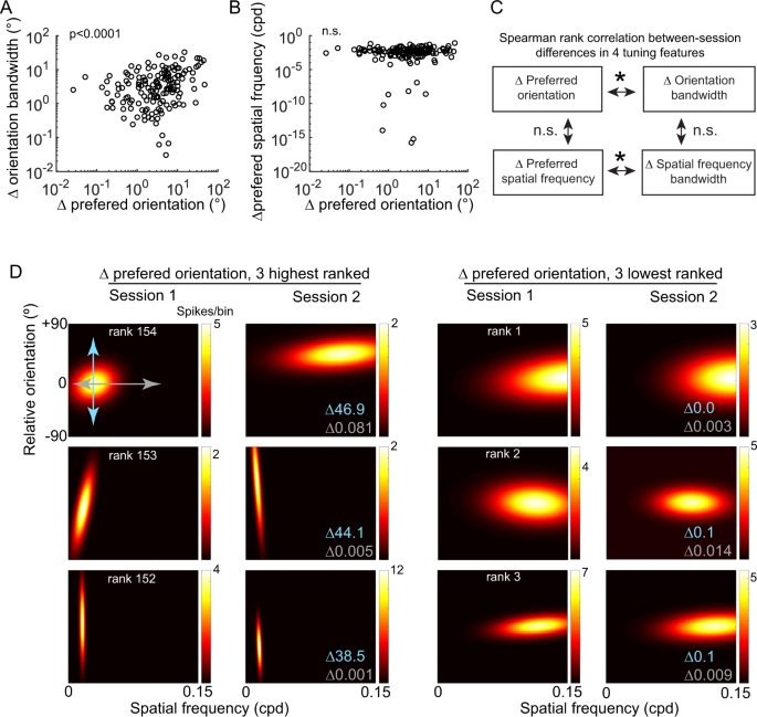 Feature selectivity is stable in primary visual cortex across a
