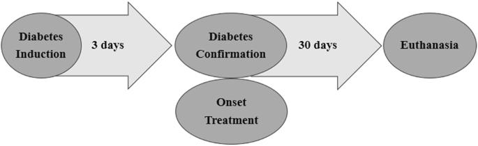 Oral formulation of DPP-4 inhibitor plus Quercetin improves