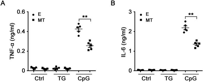 Melatonin suppresses TLR9-triggered proinflammatory cytokine