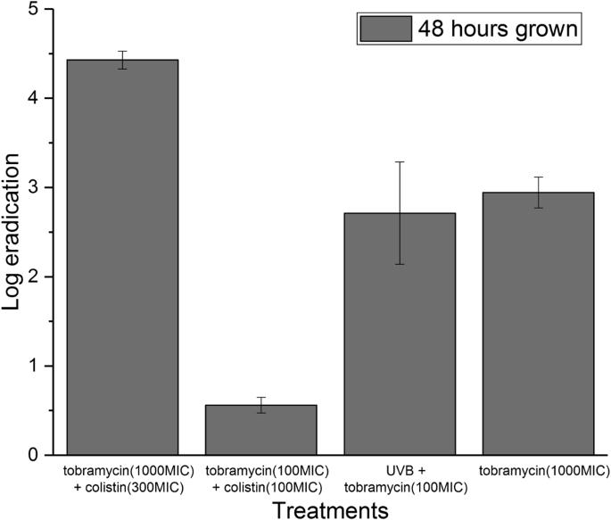 UV light assisted antibiotics for eradication of in vitro