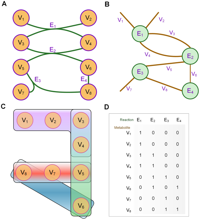 different representation of metabolic network  (a) the original metabolic  network  circle of purple line and yellow fill represents the metabolites  and