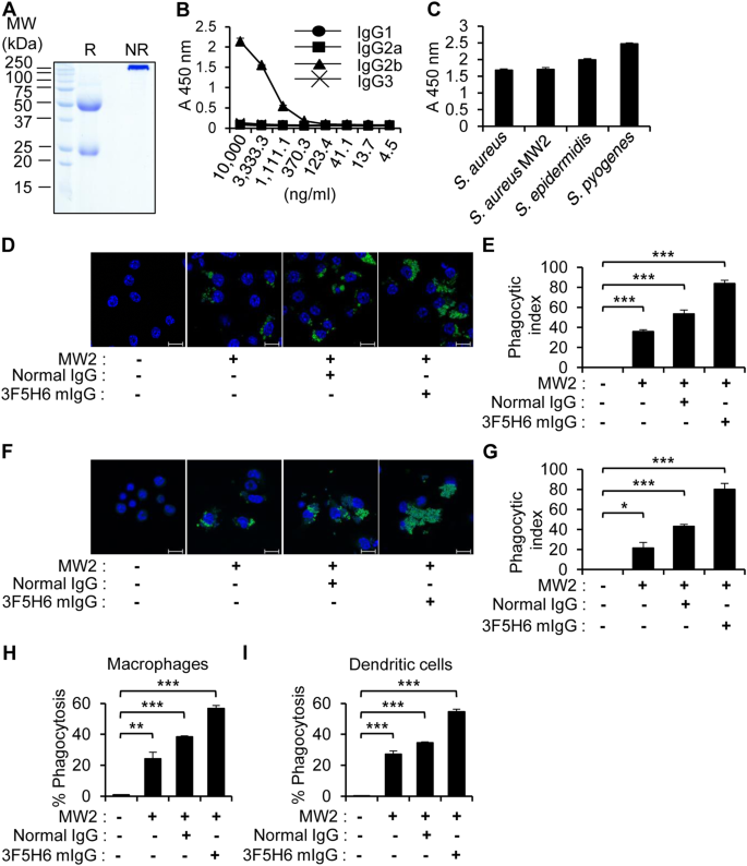 CpG-DNA Exerts Antibacterial Effects By Protecting Immune