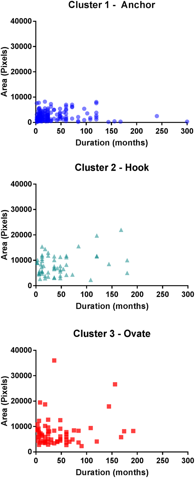 Distinct patterns of variation in the distribution of knee pain